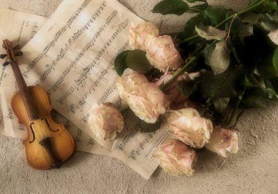 """Concert de musque classique """" Les plus belles sonates à trois"""""""