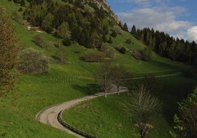Rando trail – n°5 Blue – The rise of Alpe
