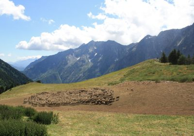 A day in the alp to meet the shepherds