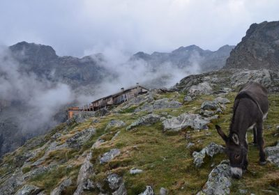 Hiking – Evariste Chancel Mountain Hut