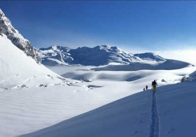XPerience Freeride and Ski Touring