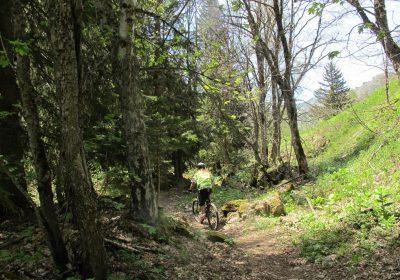 Gorges de Sarenne en boucle – Hiking