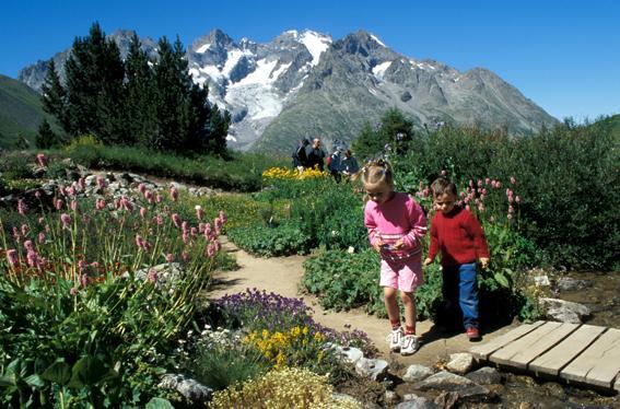 Discover the Lautaret Garden (5)