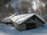 Snowshoe trail (1)