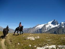 Balade à cheval avec la Meije en toile de fond (5)