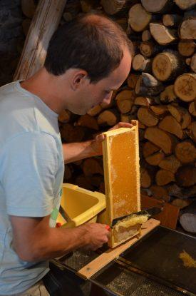 Un Ecrin de Miel – beekeeper (4)